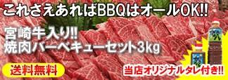 宮崎牛入り!焼肉バーベキューセット3kg+タレ付き