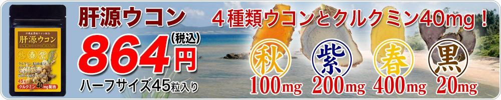 肝源ウコン45粒タイプのナビ