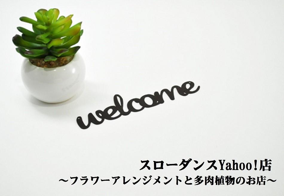 〜フラワーアレンジメントと多肉植物のお店〜