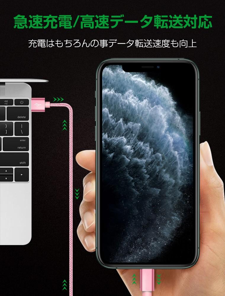 iPhone 端子