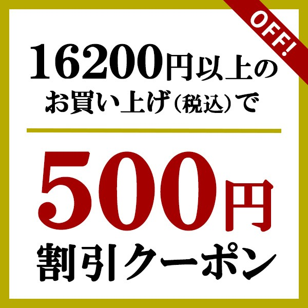 【期間中限定!500円OFFクーポン】