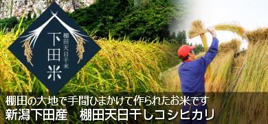 下田米1kg