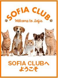 sofia club