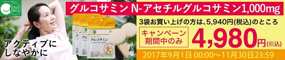 送料無料 グルコサミン N-アセチルグルコサミン 1袋 (30粒入)×3セット