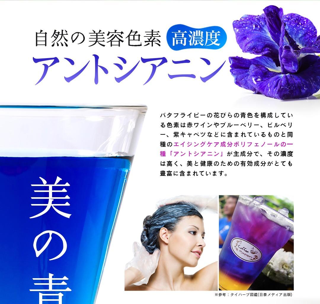 自然の美容色素 高濃度 アントシアニン。バタフライピーの花びらの青色を構成している色素は赤ワインやブルーベリー、ビルベリー、紫キャベツなどに含まれているものと同種のエイジングケア成分ポリフェノールの一種「アントシアニン」が主成分で、その濃度は高く、美と健康のための有効成分がとても豊富に含まれています。