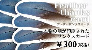 本物の羽が印刷された羽のサンクスカード
