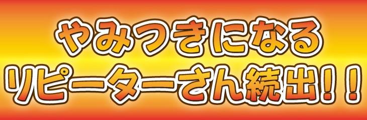 国産 カレー 牛すじ 牛肉 レトルト スパイス 送料無料