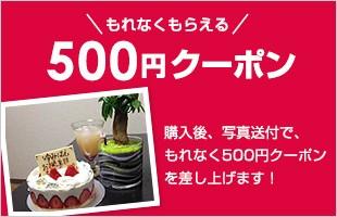 購入後、写真送付で、もれなく500円クーポン差し上げます!