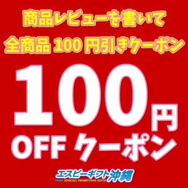 商品レビューを書いて全商品100円引きクーポン