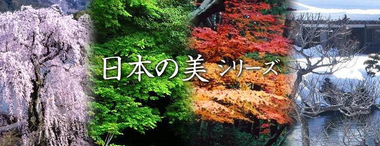 日本の美シリーズ