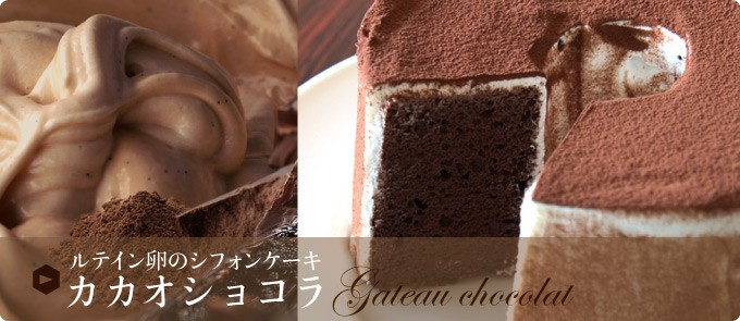 ルテイン卵のシフォンケーキ カカオショコラ