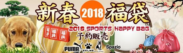 バレーボールHiQ大福袋市2018
