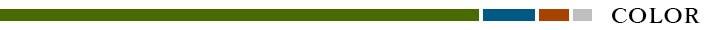 日産エクストレイルT32 インテリアパネル カラー ライン