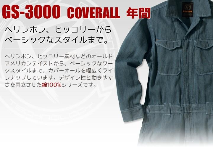 イーブンリバーGS3000