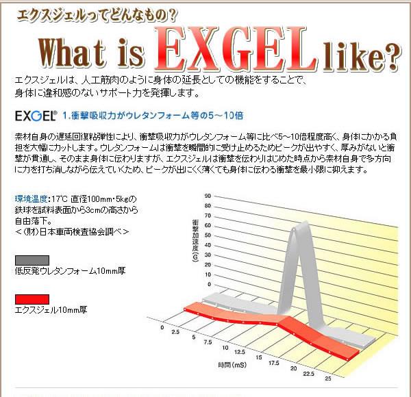 exgel エクスジェル 特徴 効果1