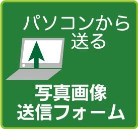 写真送信フォームPC