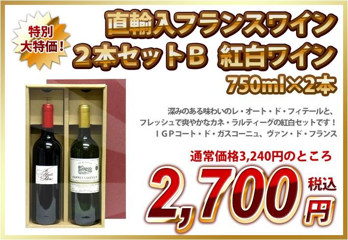 送料無料 直輸入フランスワイン2本セットB 紅白ワイン 750ml×2本