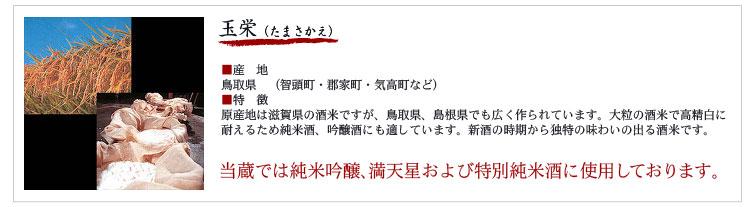 玉栄(たまさかえ) ■産 地 鳥取県 (智頭町・郡家町・気高町など) ■特 徴 原産地は滋賀県の酒米ですが、鳥取県、島根県でも広く作られています。大粒の酒米で高精白に 耐えるため純米酒、吟醸酒にも適しています。新酒の時期から独特の味わいの出る酒米です。 当蔵では純米吟醸、満天星および特別純米酒に使用しております。