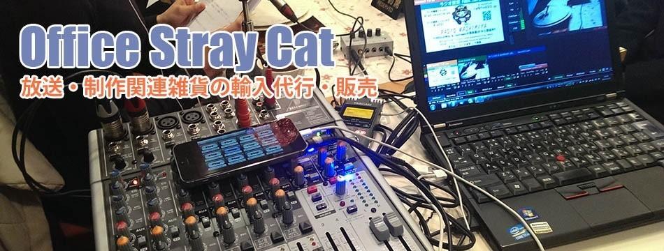 Office Stray Cat