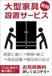 開梱設置サービス(有料)