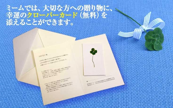 ミームオリジナル四つ葉と五つ葉のクローバーカード