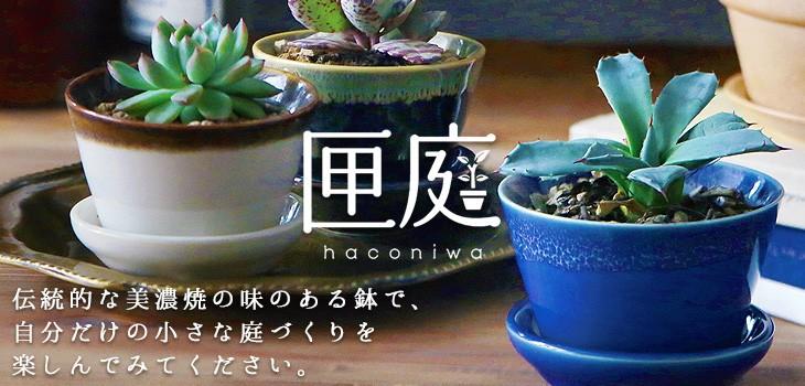 伝統的な美濃焼 手のひらサイズの植木鉢 匣庭(ハコニワ)