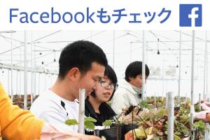 夏イチゴ農園のフェイスブック