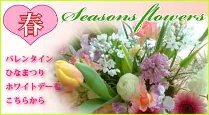 春のギフト バレンタイン ホワイトデー スイトピー チューリップ(お誕生日・展示会・お見舞い・新築祝・歓送迎会にもお使いください