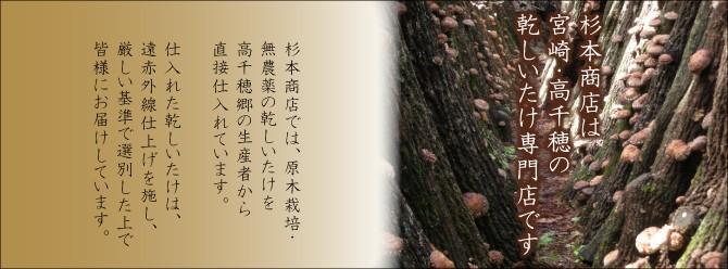 杉本商店は宮崎・高千穂の乾し椎茸専門店です。