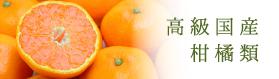 高級国産柑橘