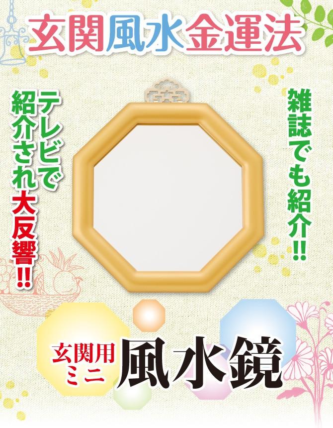 玄関風水金運法 雑誌でも紹介!!テレビでも紹介され大反響!!