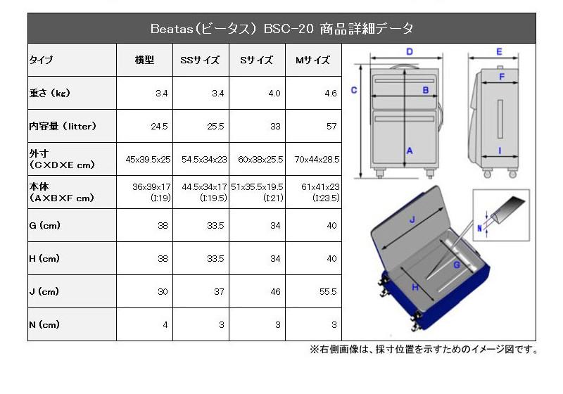 bsc-20y_12