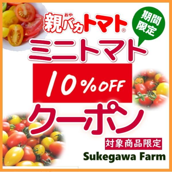 【5/26まで期間限定】親バカトマトのミニトマト10%割引クーポン