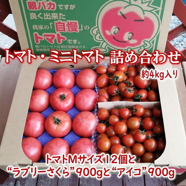 親バカトマトとミニトマトの詰め合わせ 約4kg いわき市産 選べるミニ suketoma 22