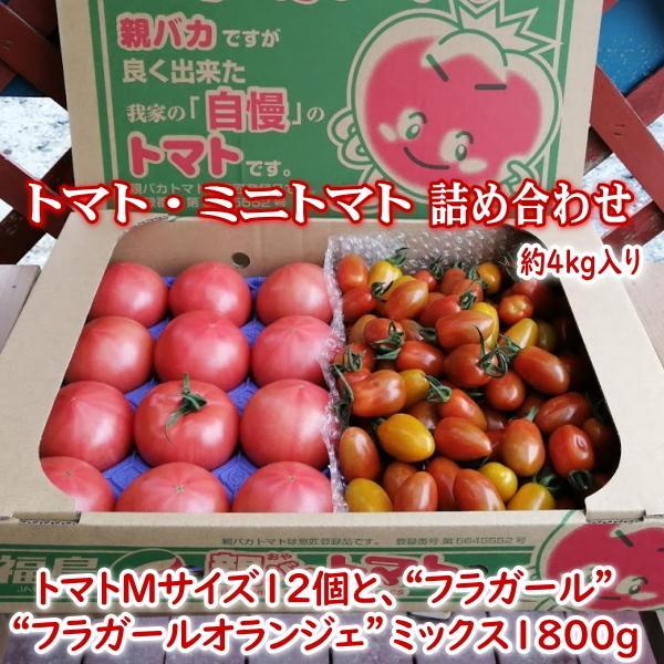 親バカトマトとミニトマトの詰め合わせ 約4kg いわき市産 選べるミニ suketoma 21