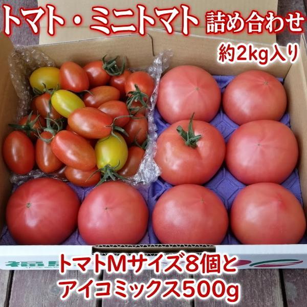 【新商品】親バカトマト8個とミニトマト500gの詰め合わせ 約2kg いわき市産 選べるミニ suketoma 18