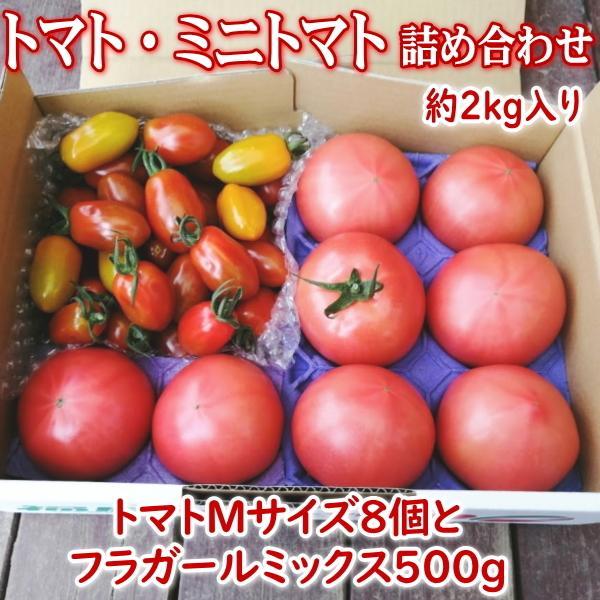 【新商品】親バカトマト8個とミニトマト500gの詰め合わせ 約2kg いわき市産 選べるミニ suketoma 19