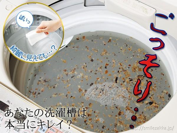 洗濯槽キレイサッパリ 50g小分けパック12個入