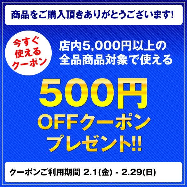 2月限定500円OFFクーポン!