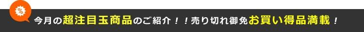 今月の超注目目玉商品のご紹介!