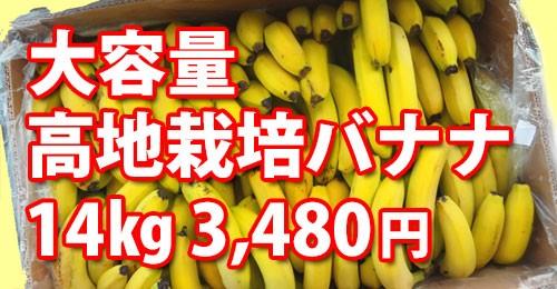 ほんのりリンゴ風味デザート系バナナ