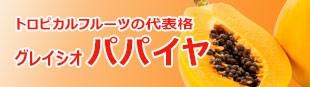 トロピカルフルーツの代表格!
