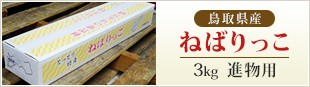 鳥取県産 ねばりっこ 3kg 進物用
