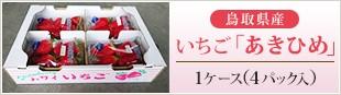 鳥取県産 いちご「あきひめ」 1ケース(4パック入)