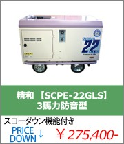 【SCPE-22GLS】
