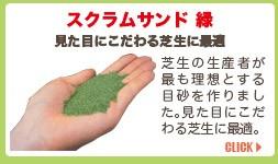 スクラムサンド緑