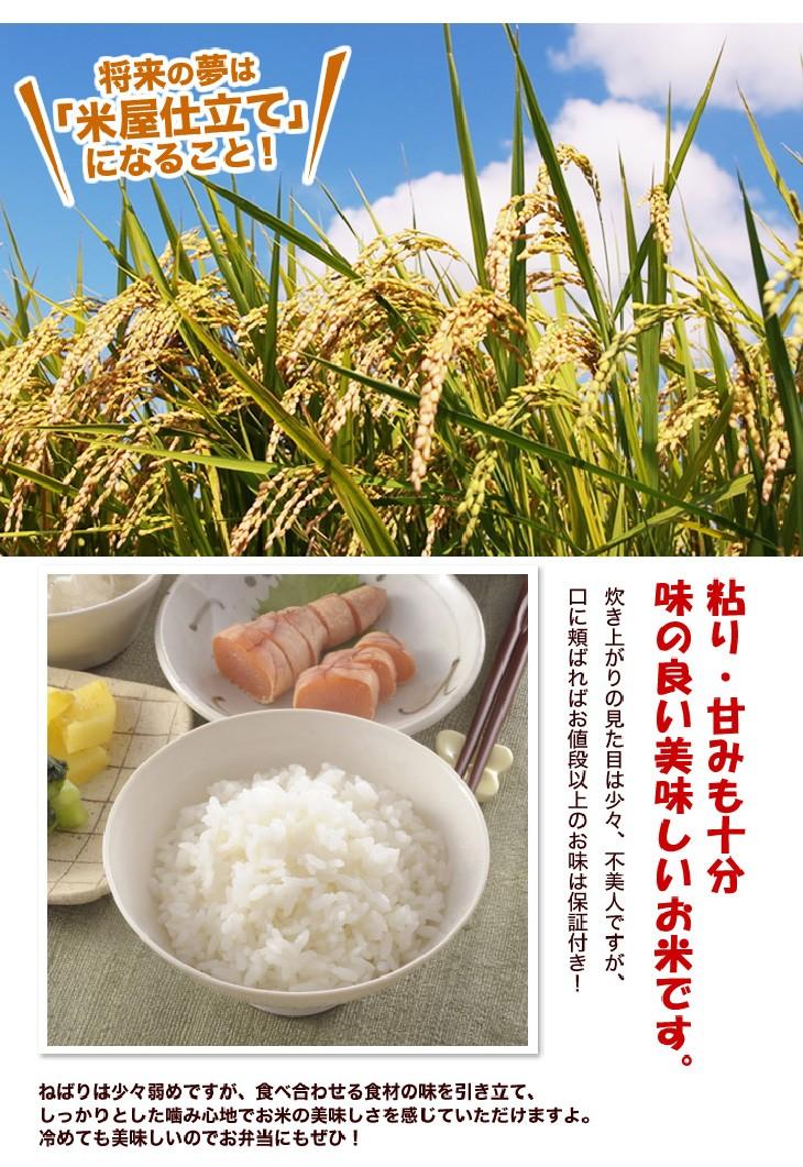 激安ブレンド米品質