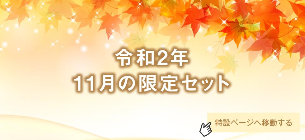 【期間限定】令和2年11月限定セット