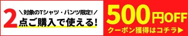 2点500円OFFクーポン