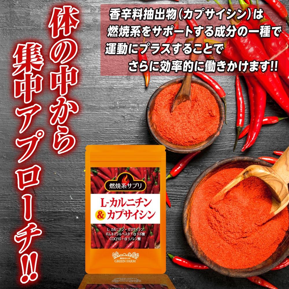 脂肪 燃焼 ダイエット Lカルニチン カプサイシン リポ酸 コエンザイムQ10 CoQ10 ギムネマエキス末 香辛料 エゴマオイル エゴマ油 燃焼効果 発汗 サプリ サプリメント